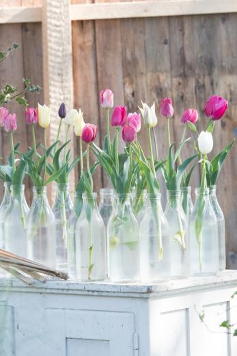 Beim Gartenzauber auf Hof Bissenbrook ist für die ganze Familie ein toller Tag drin!