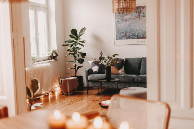 Der Blick in das wunderschöne Wohnzimmer: Pflanzen und Farben harmonieren hier perfekt